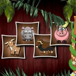 Animal Shapes 3