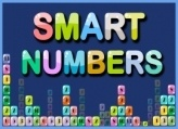 Smart Numbers