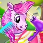 Pony Pet Salon