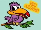 Birds Coloring