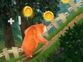 Bears Adventures