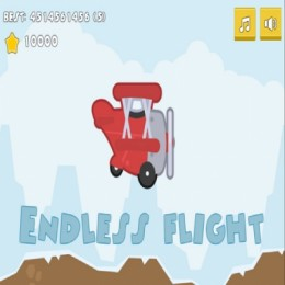 Endless Flight