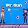 Mr Gun